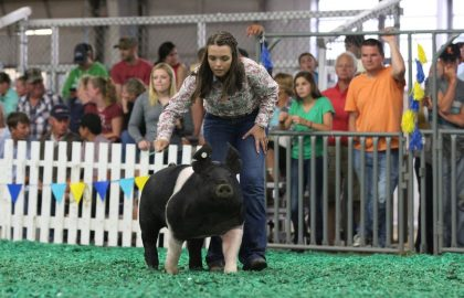 Lea Kimley showing one of her pigs.