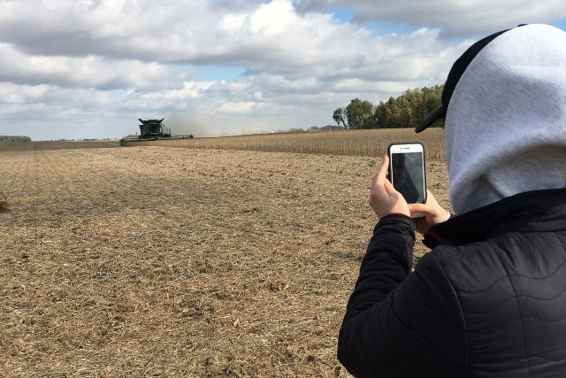 Student takes photo of combine in soybean field with smartphone.