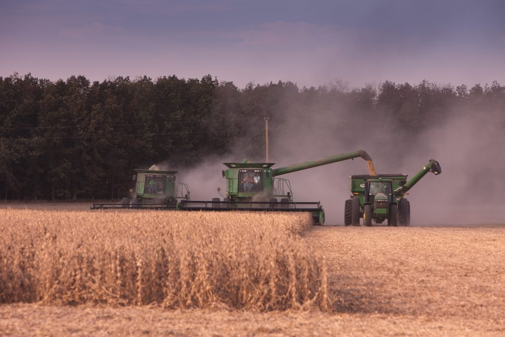 Farmers harvesting soybeans in the fall.